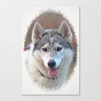 husky Canvas Prints featuring Husky by Doug McRae