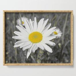 yellow columbine blossom, black white gray still life beautiful big floral pattern Serving Tray