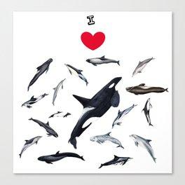 I love dolphins Canvas Print
