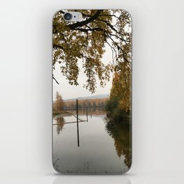 Autumn trees iPhone Skin