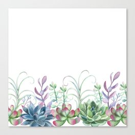 Succulents in The Garden Canvas Print