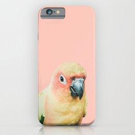 Birds of Paradise - pastel pink iPhone Case