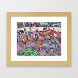 Horse at zoo Framed Art Print