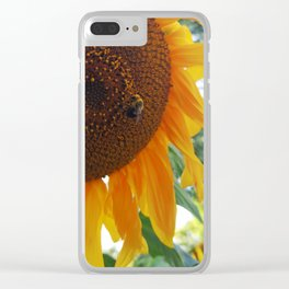 Bee on a Sunflower Clear iPhone Case