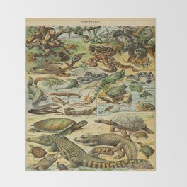 Reptiles Vintage Scientific Illustration French Language Encyclopedia Lithographs Educational Diagra Throw Blanket