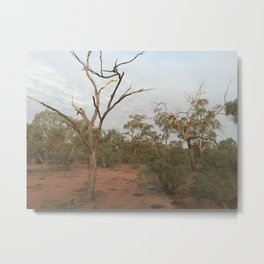 Dusk at Cunnawinya Metal Print
