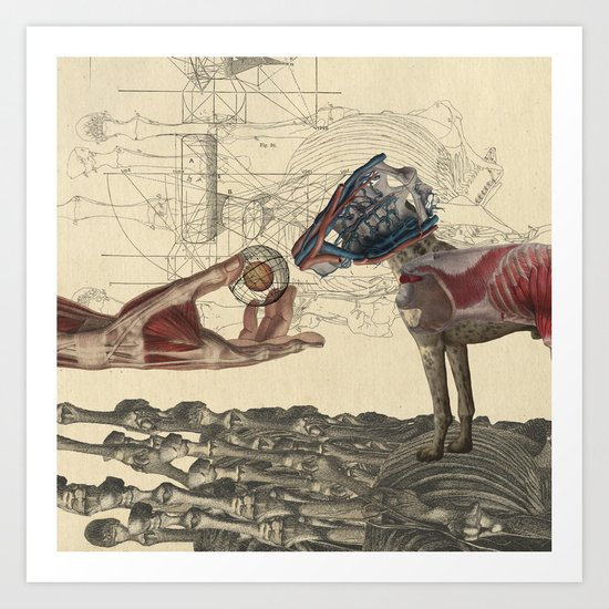 Canidae Art Print