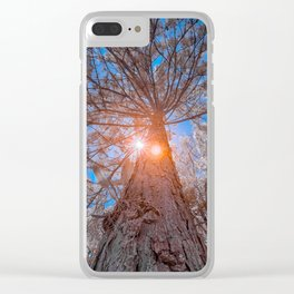 High Tree Clear iPhone Case
