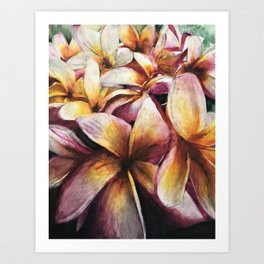 Maui Plumerias Art Print