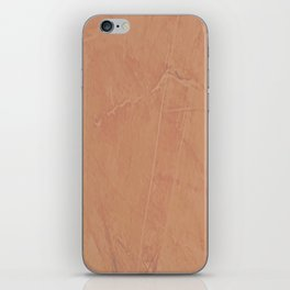 Cameo Thatch iPhone Skin