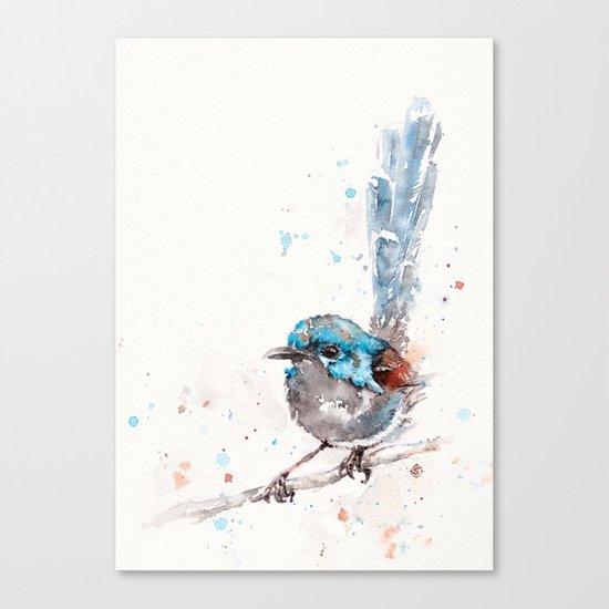 Mischief In The Making (Variegated Fairy Wren) Canvas Print