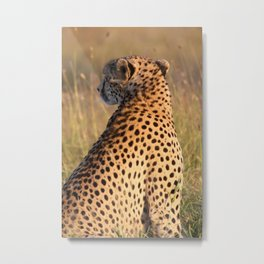 Spots for Days Metal Print