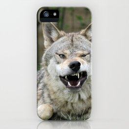 Wolf_012_by_JAMFoto iPhone Case