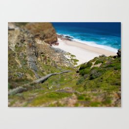 down the beach path Canvas Print