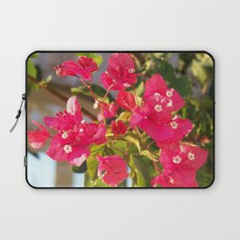 Bougainville in the sunset Laptop Sleeve