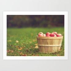 Basket of Apples Art Print