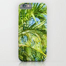 Keanae Palms Maui Hawaii Aloha iPhone Case
