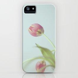 Tulips life iPhone Case