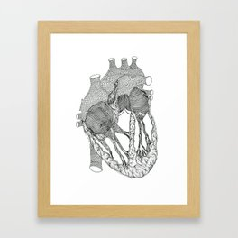 Human Heart Framed Art Print