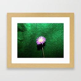 Small Flower #2 Framed Art Print