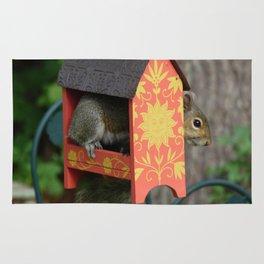 Sunshine Squirrel House Rug