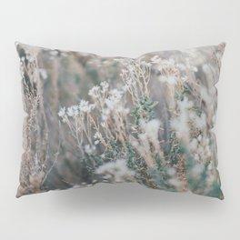 Desert Flowers Pillow Sham