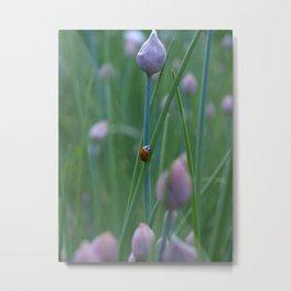 Ladybug #1 Metal Print