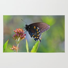 Spicebush Swallowtail II Rug