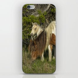 Chincoteague Foal No. 1 with Mother iPhone Skin