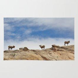 Big Horn Sheep Rug