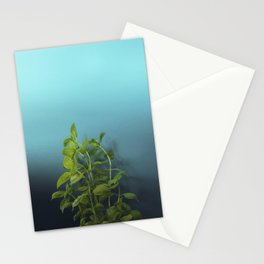 Shy and charming basil Stationery Cards