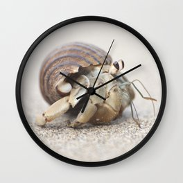 Life & times of a Hermit Crab Wall Clock