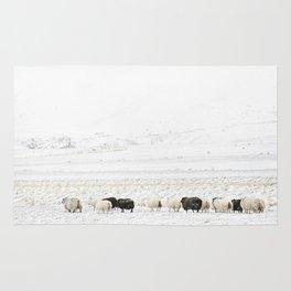 Icelandic Sheep VI Rug