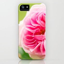 Pink Rose On A Natural Green Background #decor #society6 #buyart iPhone Case