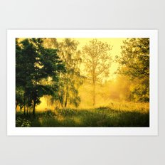 Summer remembrance Art Print