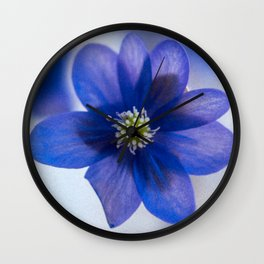 Hepatica blue Wall Clock