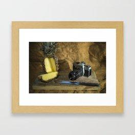 Praktica and Pineapple Framed Art Print