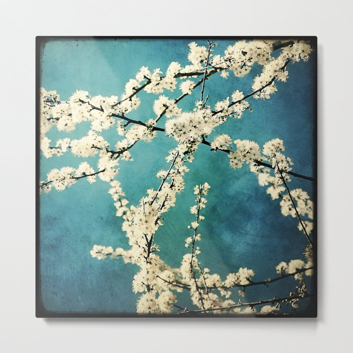 Waiting for Spring to Bloom Metal Print