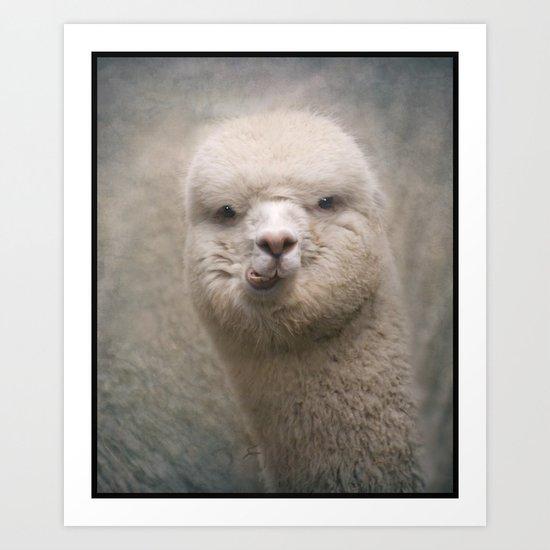 Alpaca! Art Print