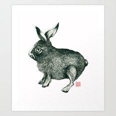 Cold Rabbit Art Print