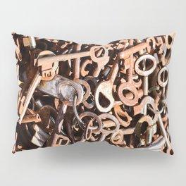 skeleton key Pillow Sham