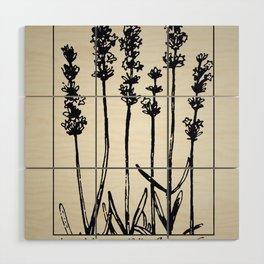 Lavender - Botanical Illustration Collection Wood Wall Art