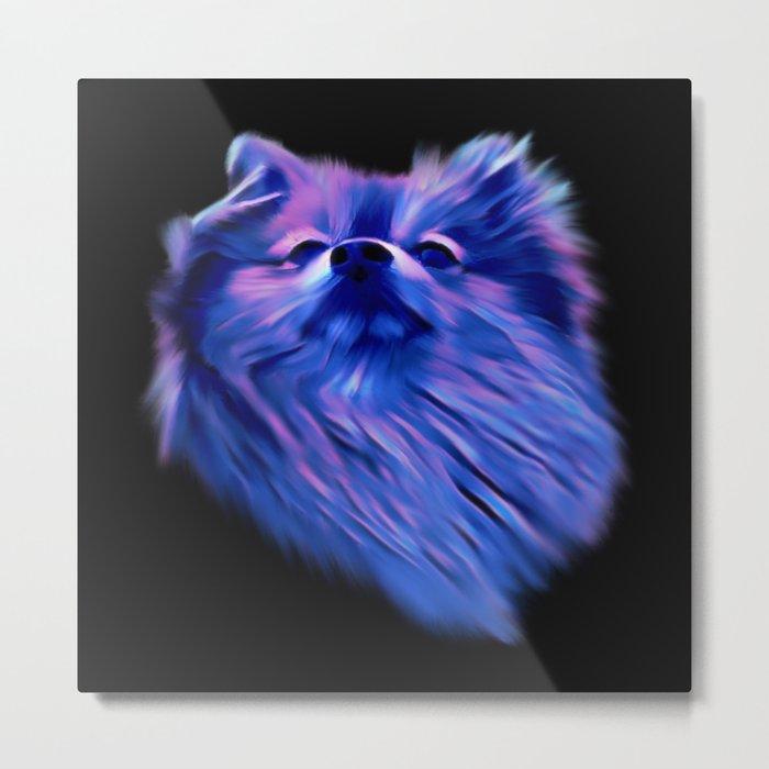 Blue Pomeranian Metal Print