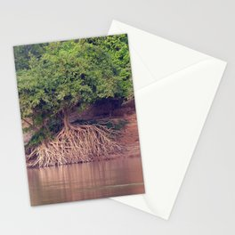 Mangrove Trees on the Mekong River Bank Laos Stationery Cards