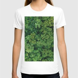 Greenery Forest (Color) T-shirt