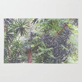 Yew Tree Rug