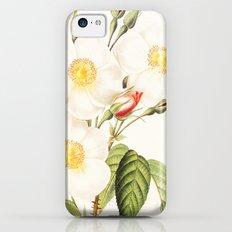 III. Vintage Flowers Botanical Print by Pierre-Joseph Redouté - Rosa Damascena Subalba iPhone 5c Slim Case
