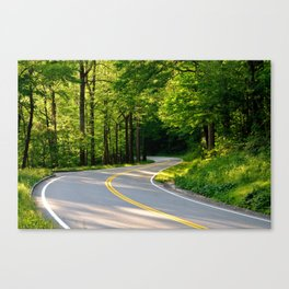 Taking Me Home Canvas Print