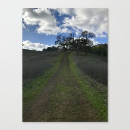 Tethered Path: Coyote Valley Canvas Print