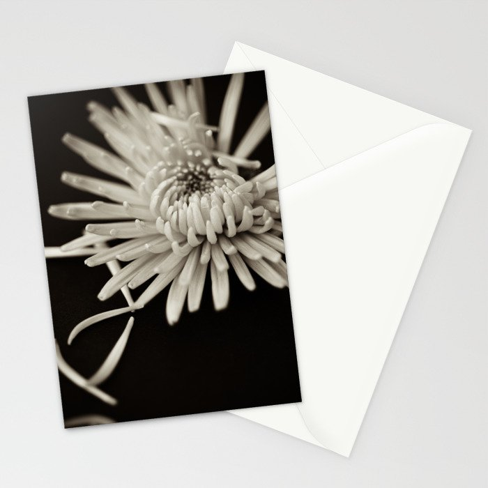 The Art of Letting Go Stationery Cards